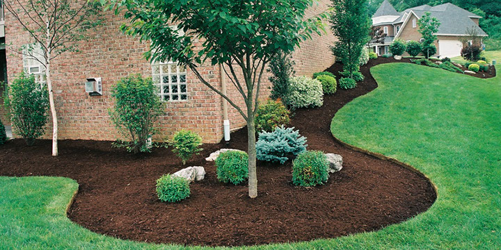Image result for mulch in landscaping